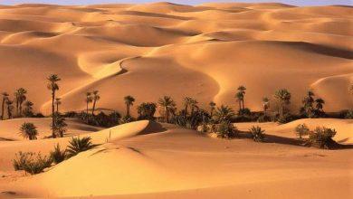 Photo of المناخ الصحراوي بالمغرب