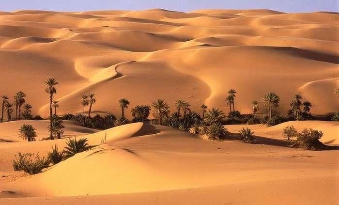 المناخ الصحراوي بالمغرب