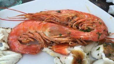 Photo of بماذا تشتهر الجبل الأسود في الأكل