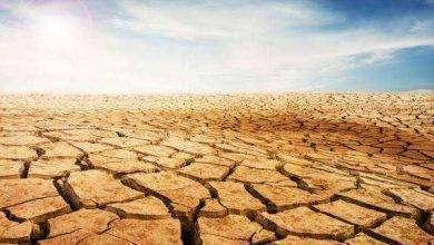 Photo of المناخ الصحراوي الجاف