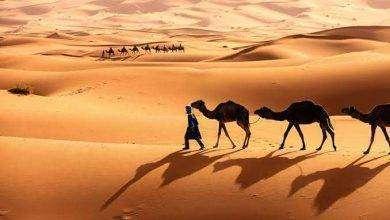 Photo of المناخ الصحراوي في الوطن العربي