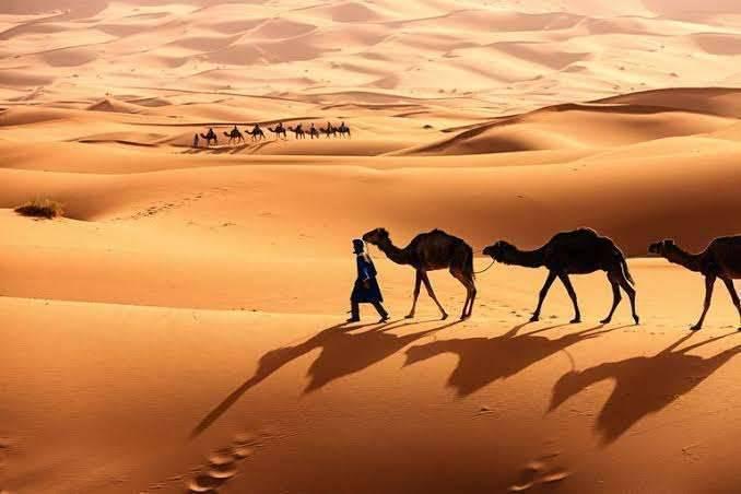 المناخ الصحراوي في الوطن العربي