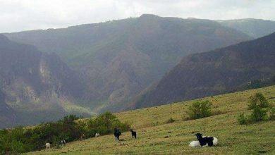 صورة جبال أفريقيا