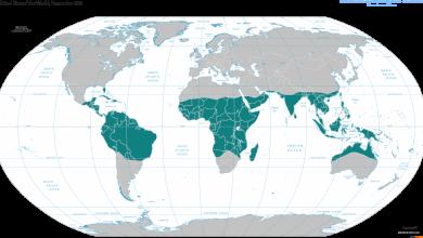 Photo of المناخ الاستوائي في العالم