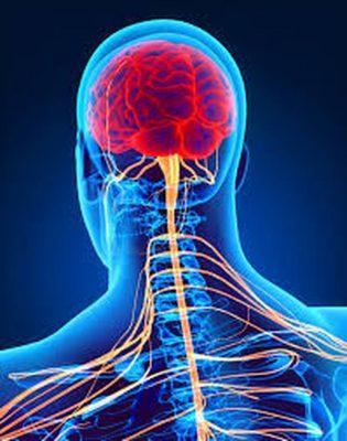 تحسين الجهاز العصبيّ
