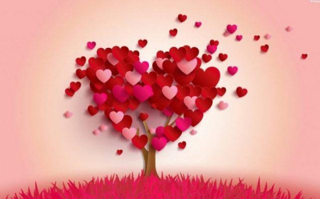 شروط الحب -ماهو مفهوم الحب