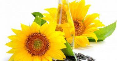 فوائد زيت دوار الشمس للبشرة