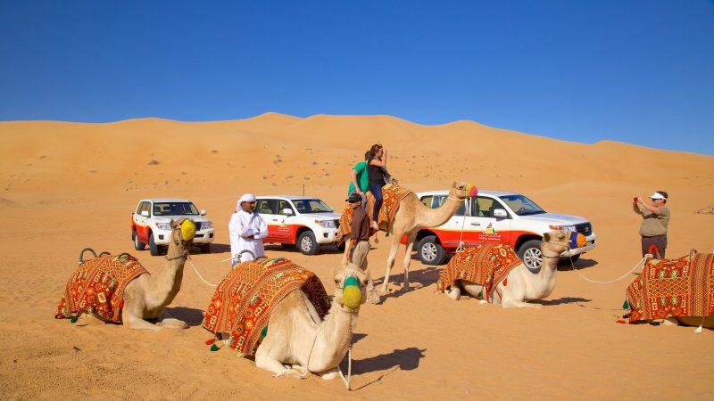 Photo of محمية دبي الصحراوية