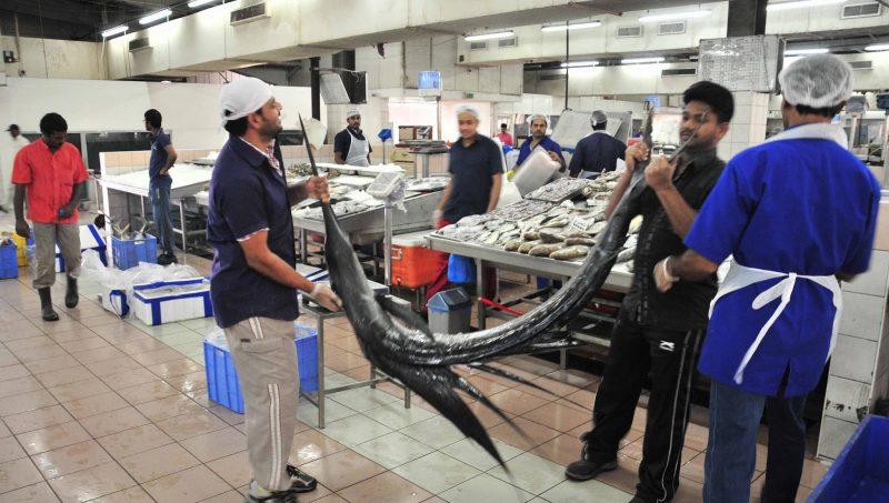 Photo of سوق الميناء للأسماك في أبو ظبي