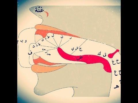 Photo of تعريف علم الأصوات