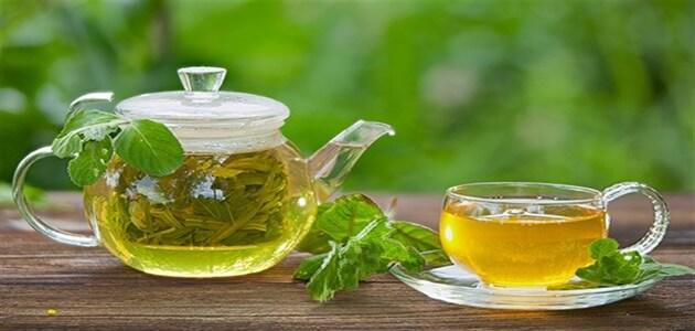 Photo of أفضل أنواع الشاي الأخضر لتخفيف الوزن… أشهر 6 أنواع من الشّاي الأخضر للتّنحيف