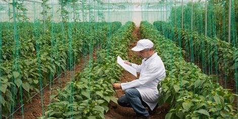 تعريف علم الهندسة الزراعية