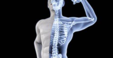 فوائد زيت حبة البركة للعظام