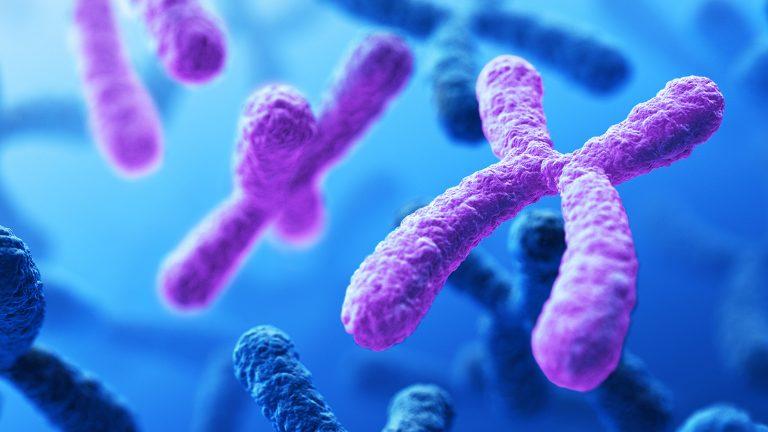 تعريف علم الوراثة