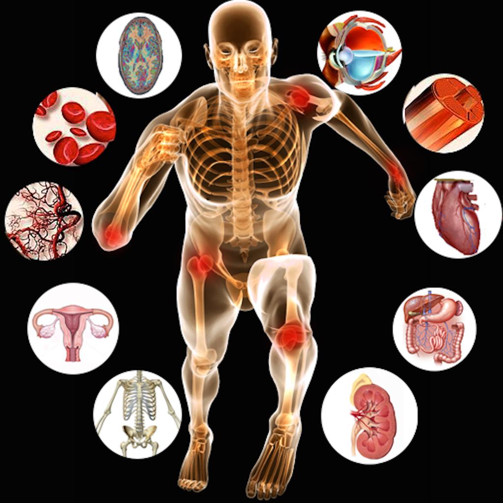 Photo of تعريف علم الفسيولوجي