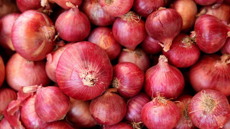 Photo of أفضل أنواع البصل… معلومات عن 14 نوع من أشهر أنواع البصل وأفضلها