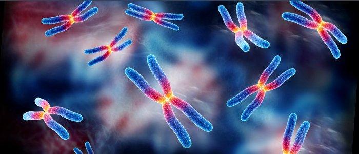 Photo of تعريف علم الوراثة
