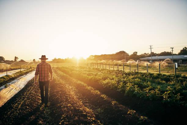 تعريف علم التسويق الزراعي