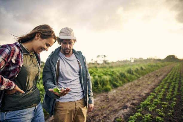 Photo of تعريف علم الاقتصاد الزراعي