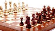 بحث عن لعبة شطرنج