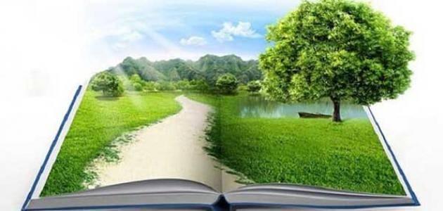 Photo of بحث عن دور الإسلام في الحفاظ على البيئة
