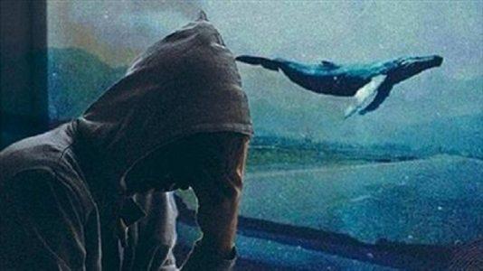معلومات عن لعبه مريم والحوت الازرق
