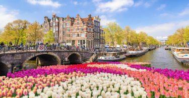 هل تعلم عن هولندا قصير للإذاعة المدرسية