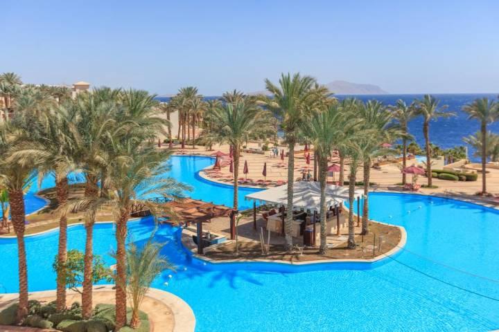 Photo of أفضل فنادق خليج القرش شرم الشيخ 2020