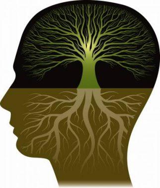 بحث عن علم النفس بالعناصر الرئيسية