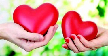 بحث عن الحب والعطاء