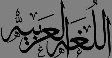 تعريف علم اللغة العربية