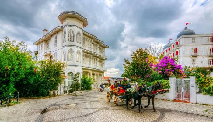 Photo of شهر العسل في اسطنبول
