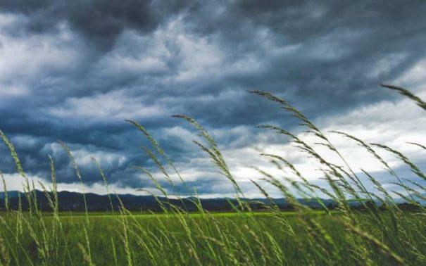 تعبير عن الرياح بالعناصر الرئيسية