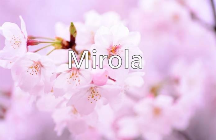 Photo of تعرف على معنى اسم ميرولا