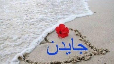 Photo of معنى اسم جايدن وصفات من تحمله