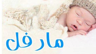 Photo of معنى اسم مارفل وصفات من تحمله