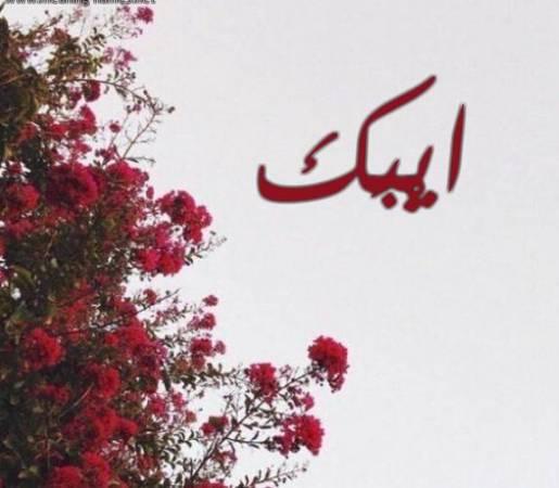 Photo of معنى اسم أيبك وصفاته