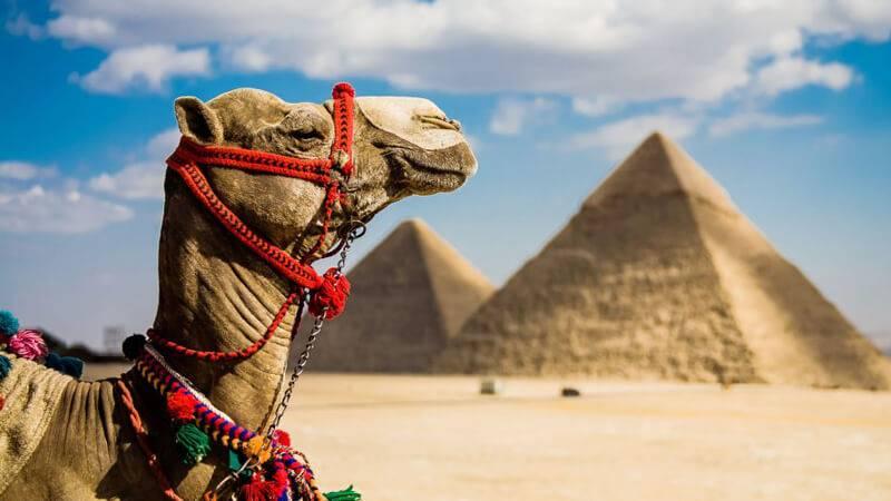 Photo of موضوع تعبير عن السياحة في مصر 2020