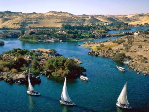Photo of تعبير عن نهر النيل بالعناصر الرئيسية