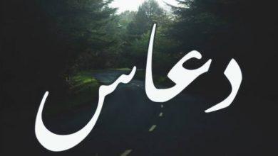 Photo of معنى اسم دعاس وصفات من يحمله