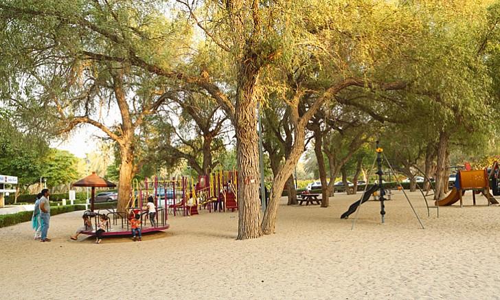 معلومات عن حديقة المشرف في دبي