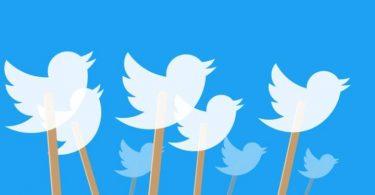 أفضل 5 تطبيقات لتصفح تويتر لنظام ويندوز 10
