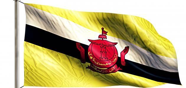 عملة دولة بروناي