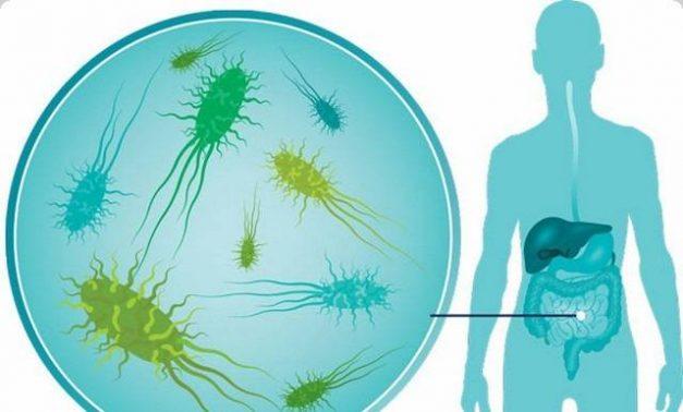 ادوية علاج بكتيريا المعدة 2020