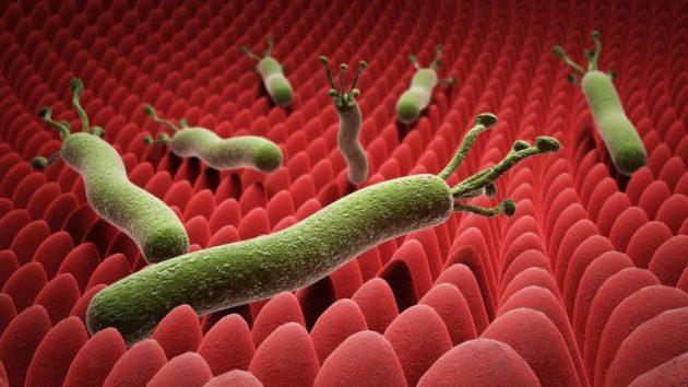 ادوية علاج بكتيريا الدم 2020