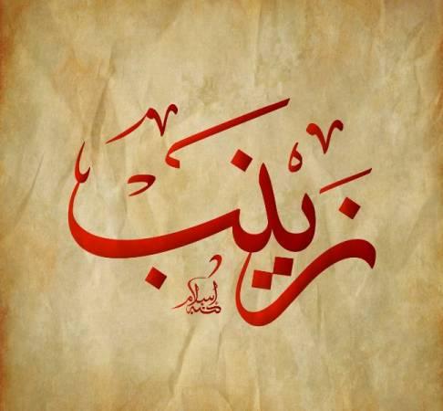 ماذا يعني اسم زينب Zaynab ؟