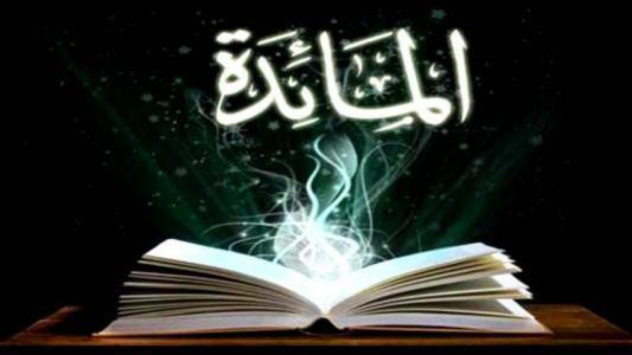 يعصر مصري محترم سورة النساء 11