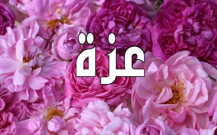 معنى اسم عزة