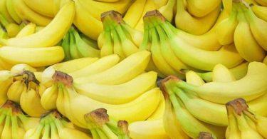 أفضل أنواع الموز