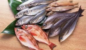 تفسير حلم السمك للامام الصادق